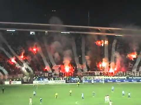 Crvena Zvezda fans